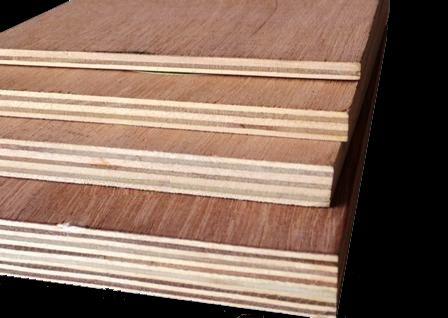 WBP Plywood China