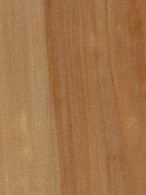 agathis veneer plywood