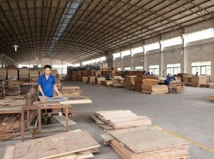 Plywood Industry in China