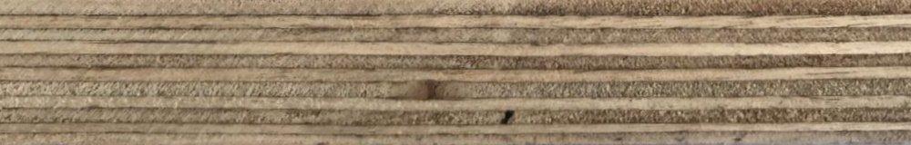 eucalyptus core film faced plywood