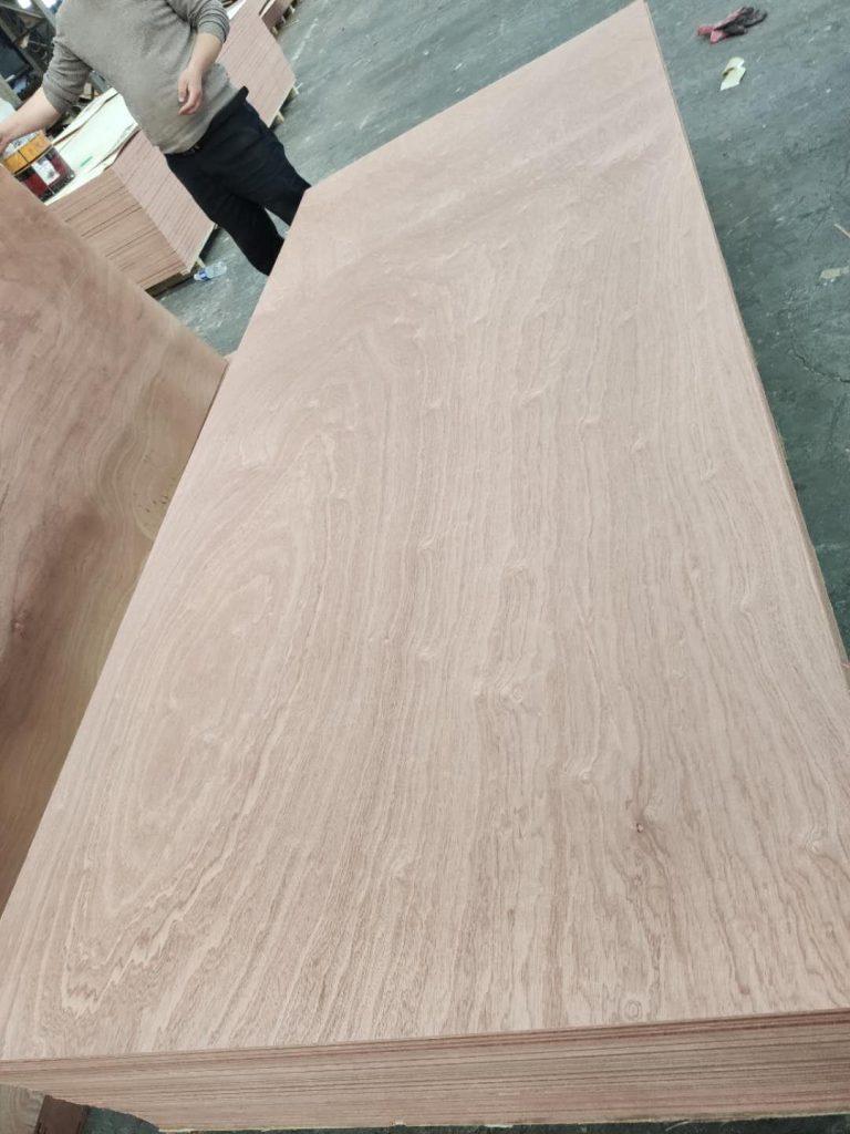 jumbo size plywood