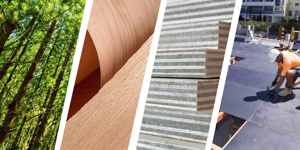 plywood company