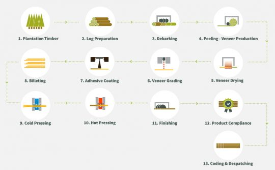 plywood production process