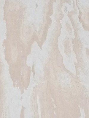 radiata pine softwood plywood