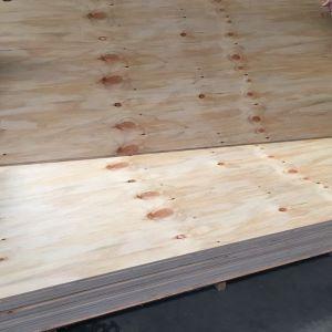 pine structural cdx