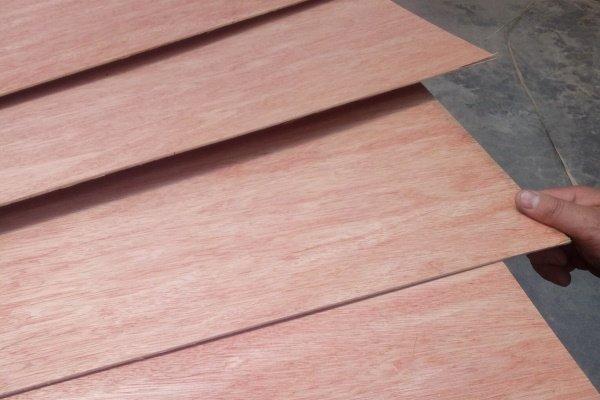 bintangor faced plywood