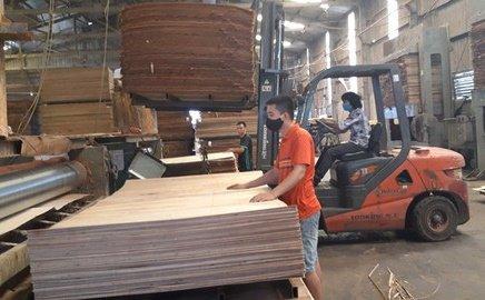 vietnam plywood exporters